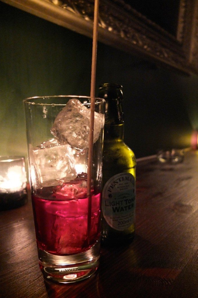 sloe-gin-tonic-g-t-bar-berlin