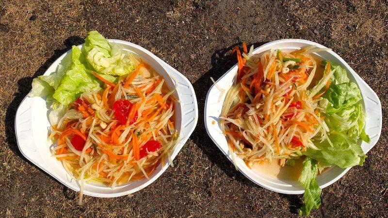 berlin-thai-park-preussenpark-papaya-salat-4