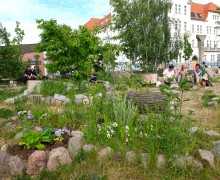 wilder-hase-im-nirgendwo-veganer-biergarten-berlin-2