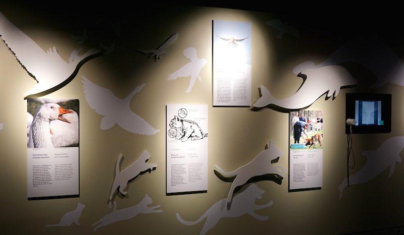 Berlin-Spy-Museum-Ausstellung-Tiere-als-Spione