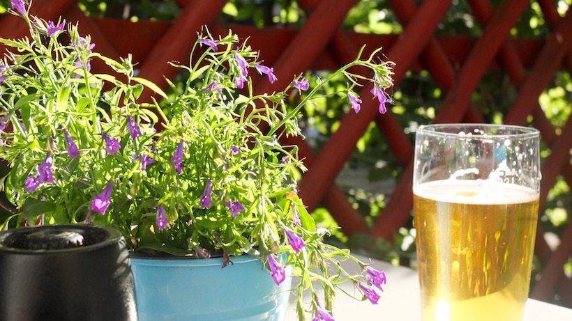 berlin-restaurant-parkstern-bier