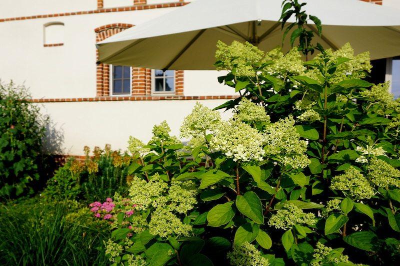 Brandenburg-Landhaus-Ribbeck-Garten-2